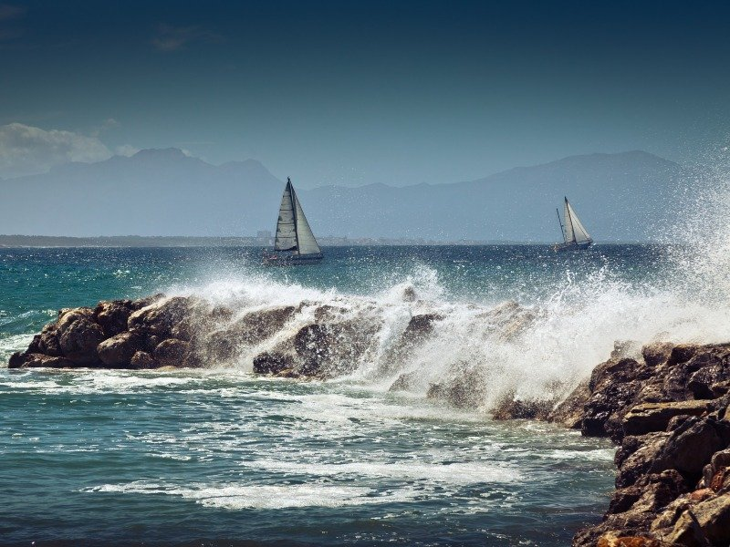 Whales and sailing boats in Mallorca