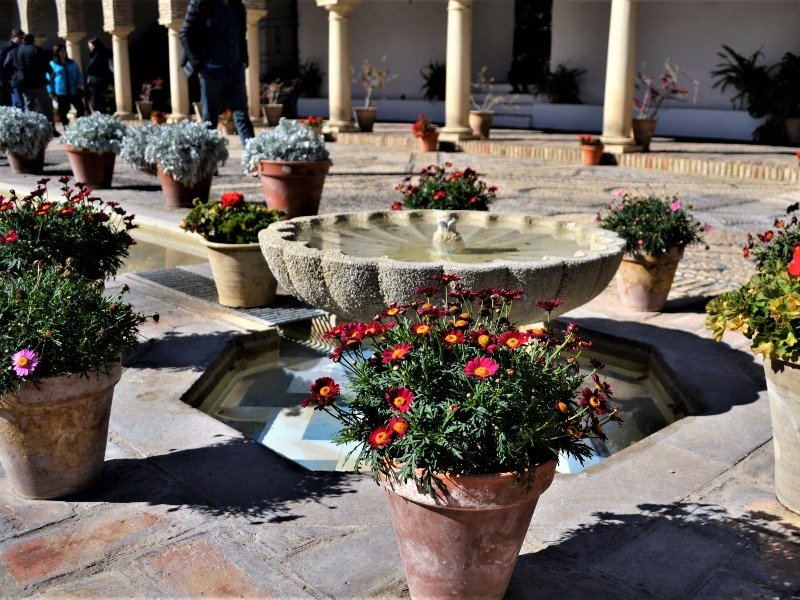 Flowers inside a patio in Cordoba