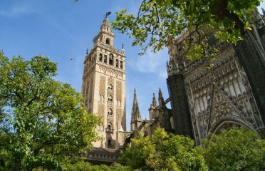 Giralda and Cathedral