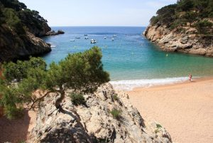 CALA POLA-Pine tress and great mediterranean feeling!