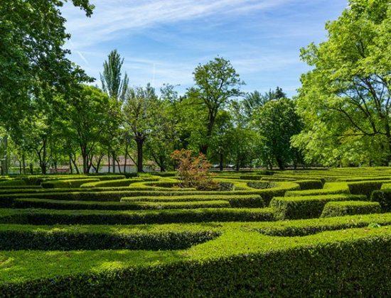 Juan Carlos I park, Madrid