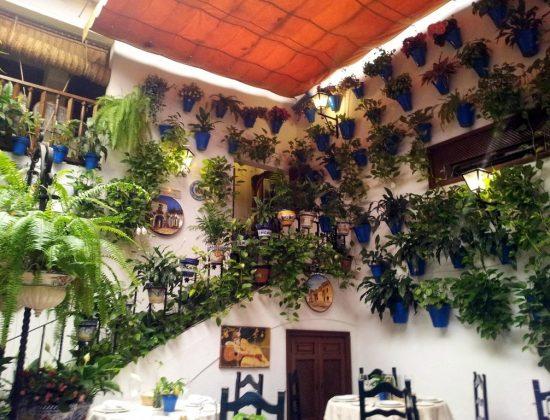 Taberna Puerta Sevilla – Authentic restaurant in the center of Córdoba