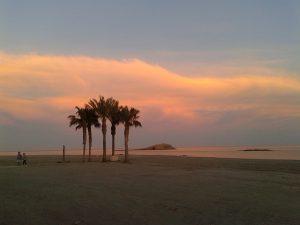 beaches in Southern Spain - playa de los muertos palm trees