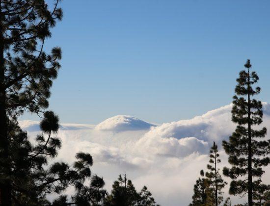 Anaga natural park in Tenerife