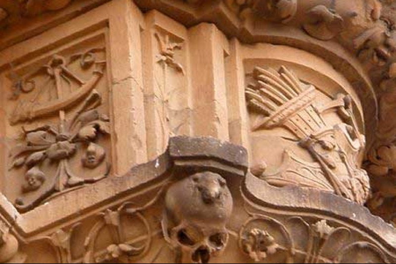Frog in the university of Salamanca