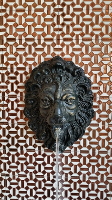 lion head fountain in jerez de la frontera