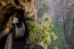 1000 windows hike in Tenerife