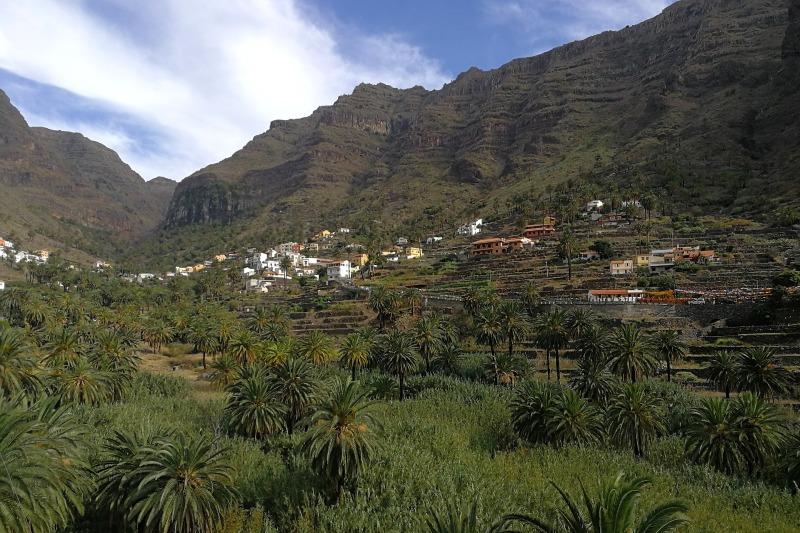 Terraces in La Gomera