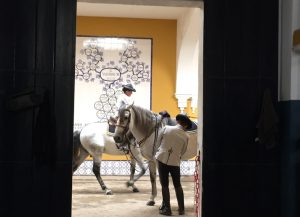 Andalusian horse as part of Spanish culture