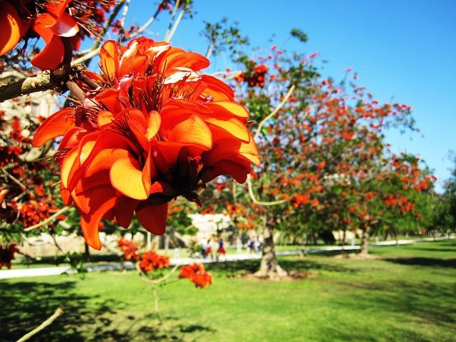 Turia Gardens Valencia