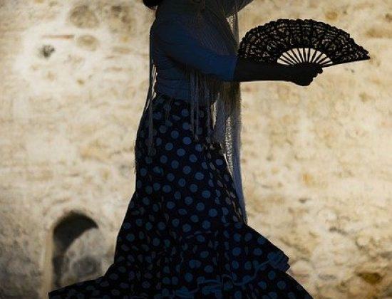 Flamenco Shows in Madrid