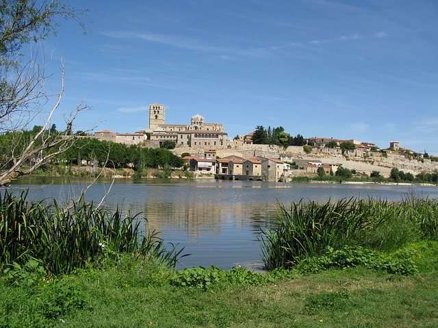 zamora from a distance