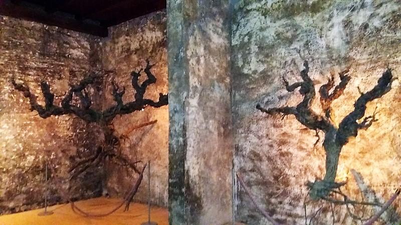 Wine cellar in Logroño